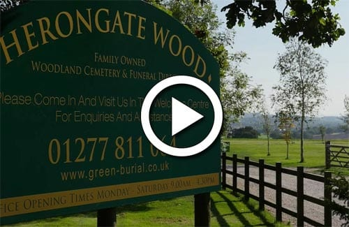 Take a video tour of Herongate Wood